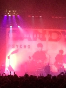 The Jesus ad Mary Chain